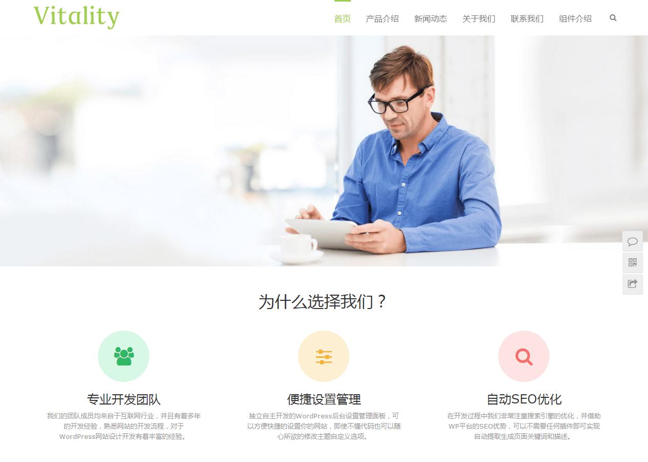 WordPress主题推荐之通用型企业主题 Vitality