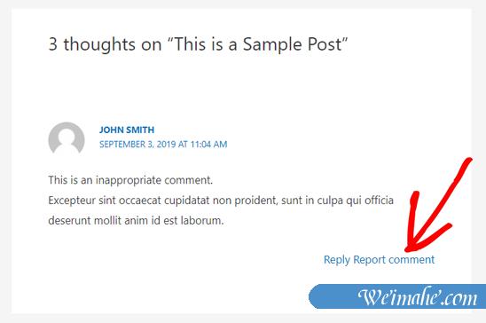 如何允许用户在WordPress中报告不适当的评论