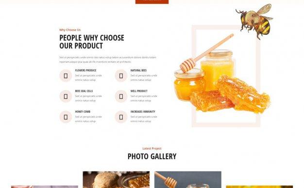 蜜蜂养殖场和蜂蜜电商网站HTML模板